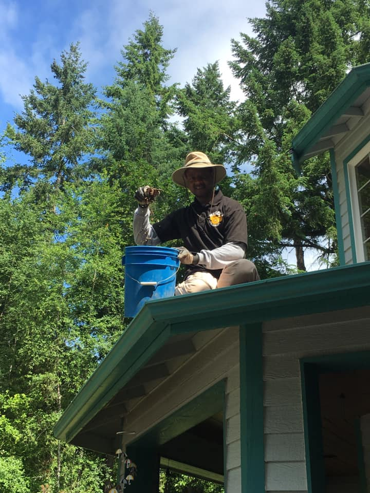 Barry cleans gutters